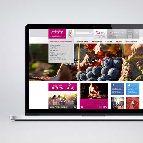 Web Ruta del vino Ribera del Duero